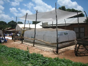 The Rockefeller Foundation and AGRA are supporting the work on linking small farmers to markets.  Pictured a GrainPro Cocoon in Njombe, Tanzania. (Courtesy: GrainPro)