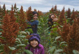Children in an amaranth field (Courtesy: Puente a la Salud Comunitaria)