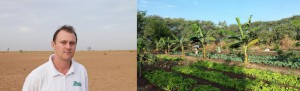 TREES' Executive Director John Leary visits a barren field in Senegal (left). After 4 years of Forest Garden farming, this land was transformed into a productive, diverse landscape (right). Courtesy of Trees for the Future