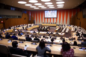 GODAN High Level Forum at the UN ECOSOC chamber (Photo: Perry Bindelglass, 2016)